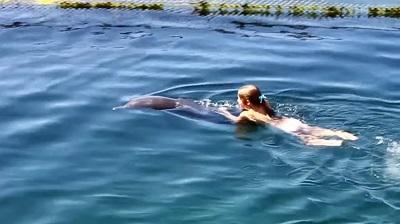 Дельфинотерапия в Казачьей бухты