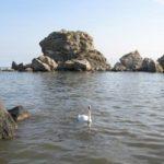 Крабий остров — загадочное место в окрестностях Судака