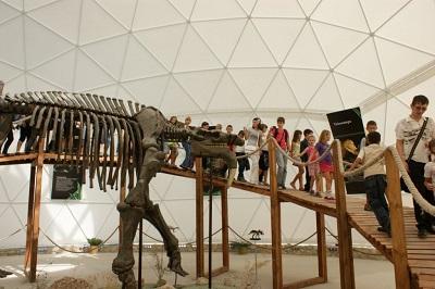 Скелеты динозавров в Динотерии