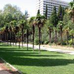 Мисхорский парк — высший пилотаж садово-паркового искусства в Крыму