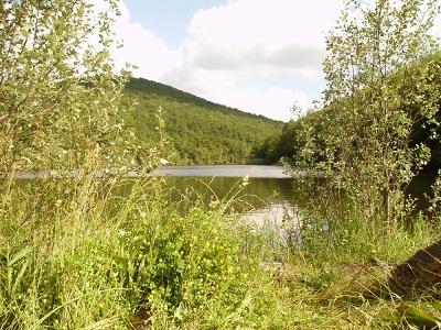 озеро Широкий Яр фото 1