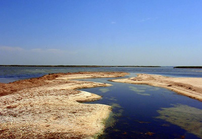 Лебяжьи острова фото 1