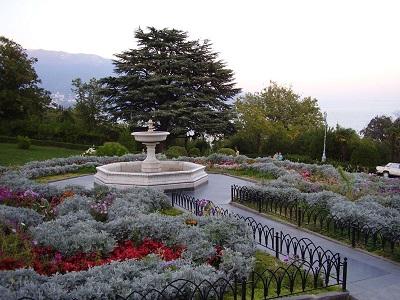 Ливадийский парк фото