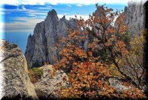 какая погода в Крыму в ноябре