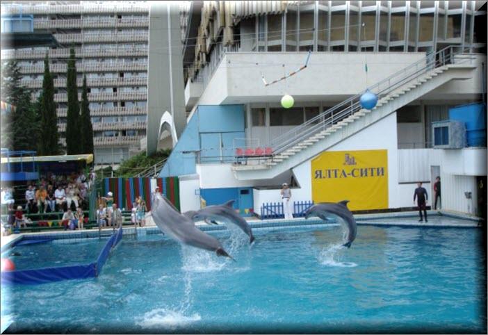 ялта дельфинарий интурист
