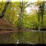 Альма — самая легендарная река в Крыму