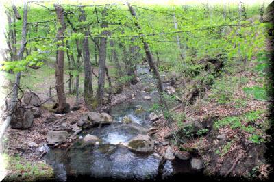 река альма в крыму описание