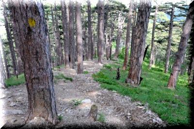 таракташская тропа ялта