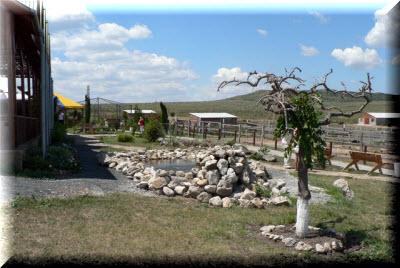 страусиная ферма в крыму