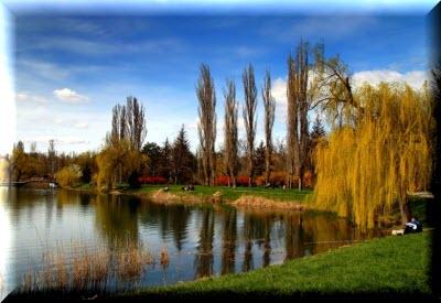 фото гагаринский парк симферополь