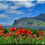 Майская погода в Крыму: почти сезонный климат