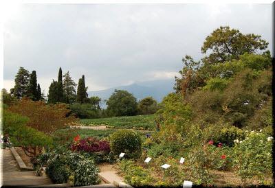 никитский ботанический сад в сентябре