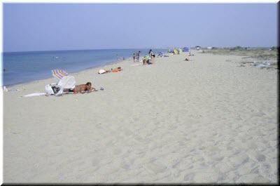 пляжи поселка витино