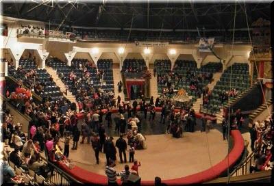 фото внутри симферопольского цирка