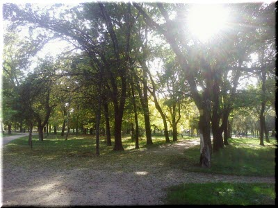 парк имени тараса шевченко симферополь фото