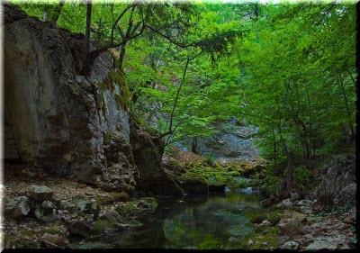 фото в долине реки Узунджа