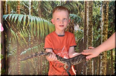 крокодильчики на ферме