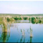 Кызыл-Яр — опресненное озеро на западе Крыма