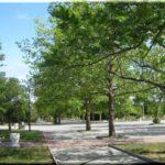 Парк Победы — символический сквер в Севастополе