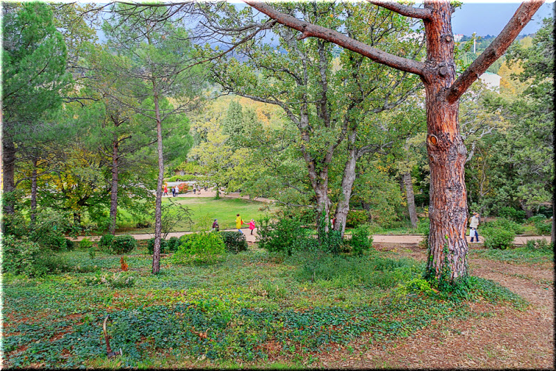 фото в парке Монтедор