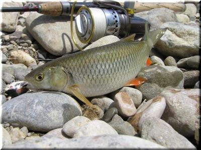 рыбалка на Салгире