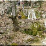 Водопады в ущелье реки Люка возле Васильевки (Ялта)