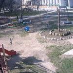 Камера рядом с детской площадкой села Укромное