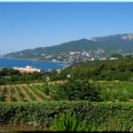 Массандра — самый виноградный пригород Ялты