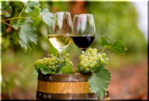 Евпаторийский завод классических вин