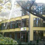 «Маленькая страна» — сеть частных детсадов в Ялте