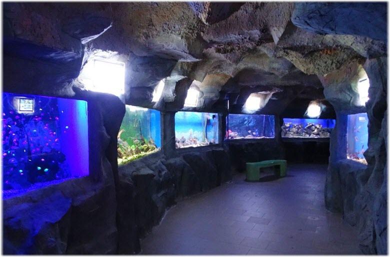 Аквариум «Подводный грот»
