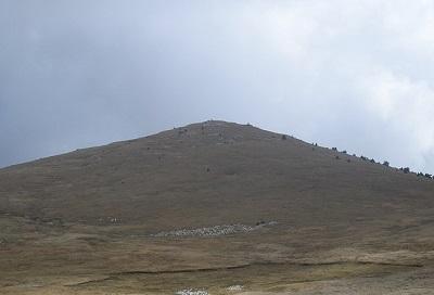 Гора Зейтин-Кош фото 1