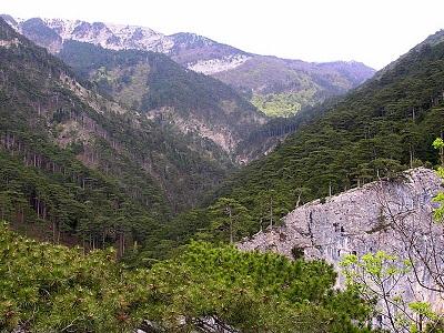 Крым ущелье Уч-Кош фото