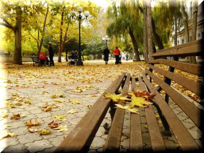 погода на западе крыма в ноябре