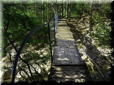 боткинская тропа маршрут