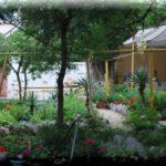 «Чайка» — бюджетный гостевой дом в курортной Алупке