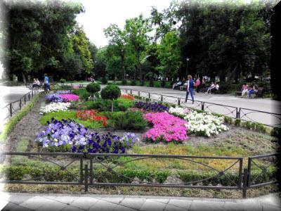 парк тренева симферополь фото