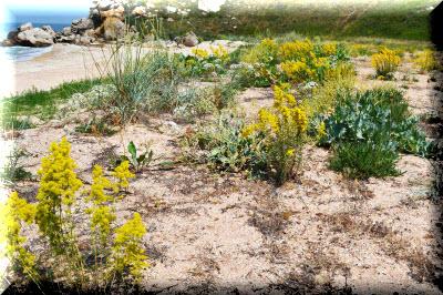 природный парк караларский крым