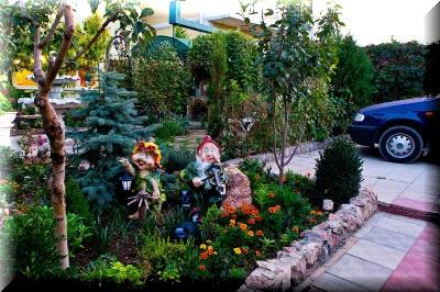 севастополь гостевой дом зеленый дворик фото