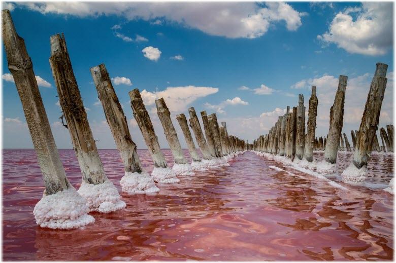виды озера Сасык-Сиваш