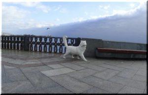 Коты украсят Ялту к старту туристического сезона