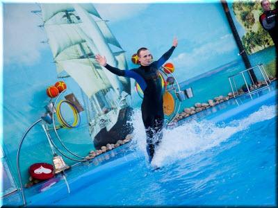 дельфинарий в феодосии