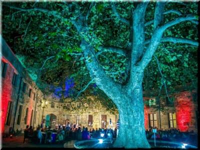 В крымском Воронцовском дворце пройдут концерты классической музыки