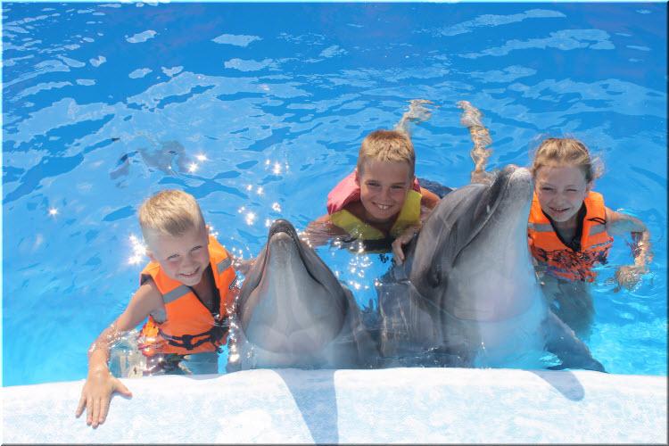 дети с дельфинами в дельфинарии