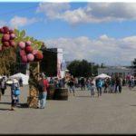 На фестиваль «Вкус Крыма» в Севастополе приедет Ирина Дубцова
