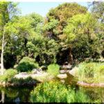 Форосский парк: для улучшения здоровья и настроения в Форосе