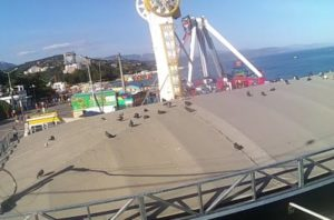 фото с веб-камеры на Набережной Алушты