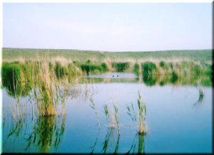 Озеро Кызыл-Яр в Крыму