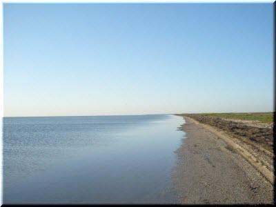 берега Каркинитского залива