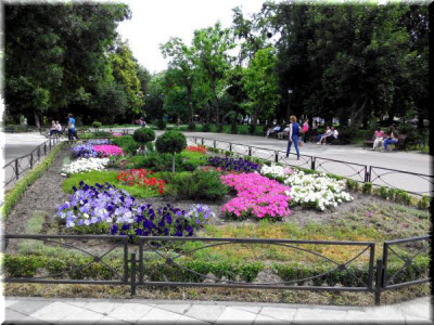 парк Тренева